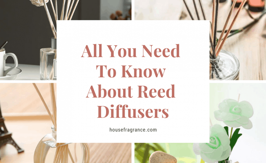 All You Need To Know About Reed Diffusers