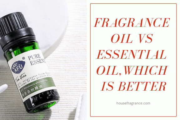 Fragrance Oil vs Essential Oil, Which is Better?