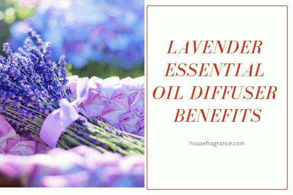 Lavender Essential Oil Diffuser Benefits