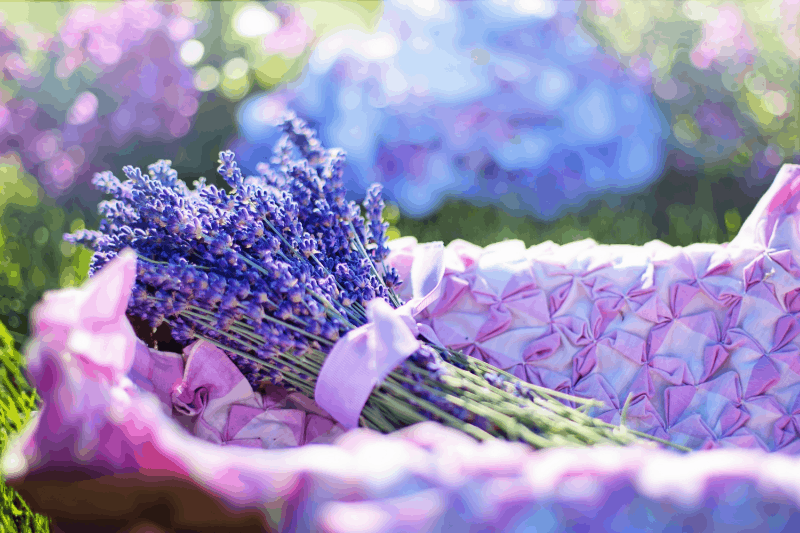aroma-Lavender
