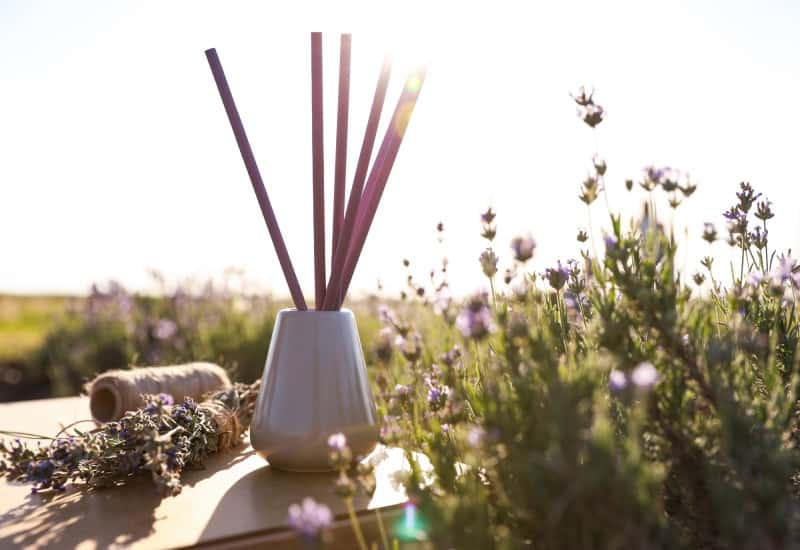 Best Lavender Reed Diffusers