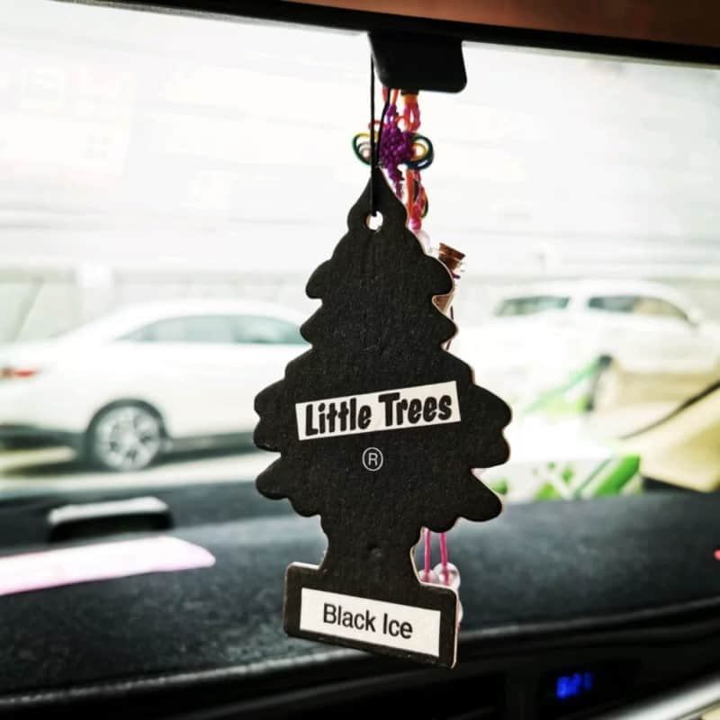 Little Trees Air Fresheners Review